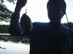 Dink's Fish