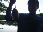 Dink's Fish