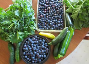 Kale, Blueberries, Summer Squash, Cukes