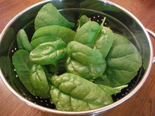 Spinach & Zen Hybrid