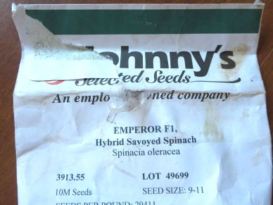 SpinachSeed