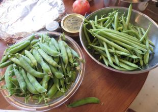Lincoln Peas and Snaps
